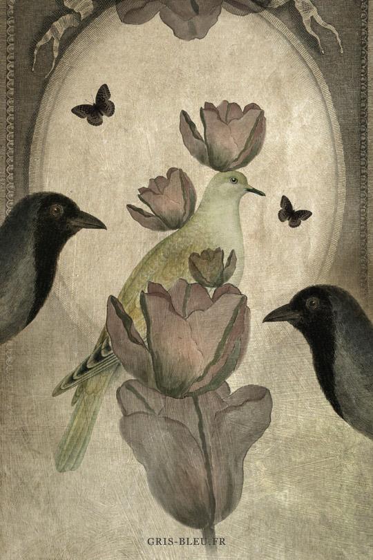 L'équilibre des tulipes
