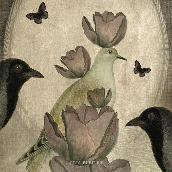 Tulipes et oiseaux